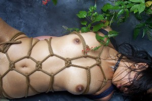 (SM緊縛えろ写真)全身をロープで縛られた自由の利かない女子の姿にボッキしたwwww